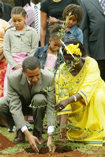 2006 AS A US SENATOR OBAMA VISITED KENYA WITH HIS DAUGHTERS (SEE THEM) AND PLANTED AN AFRICAN OLIVE TREE AT UHUR PARK,NAIROBI,MON. AUG. 82006 WITH WANGAI MAATHAS, NOBEL PEACE LAUERATE ASSISTING HIM