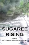 sugareerising cvr
