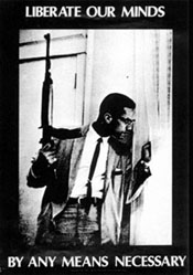 Malcolm_X_any_means_necessary